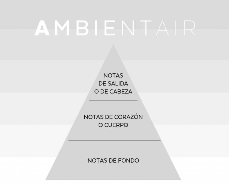 La importancia de la Pirámide Olfativa para elegir el aroma perfecto